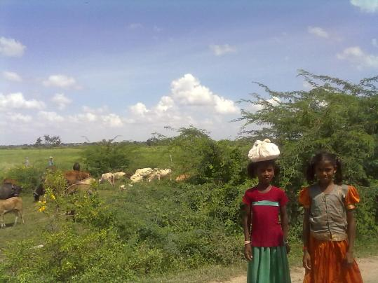 Girls in field carrying lunch (post 7)