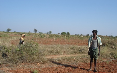 farmer in dryland